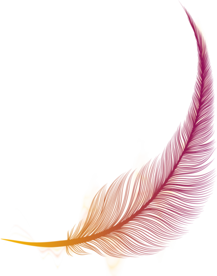Feather02
